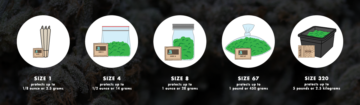 Size 1 Boveda protects up to 1/8 ounce or 3.5 grams. Size 4 Boveda protects up to 1/2 ounce or 14 grams. Size 8 Boveda protects up to 1 ounce or 28 grams. Size 67 Boveda protects up to 1 pound or 450 grams.