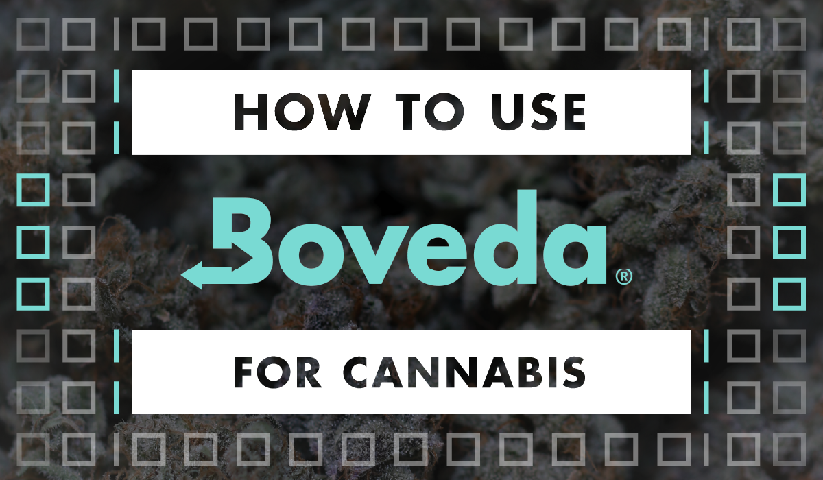 How to Use Boveda for Cannabis in text